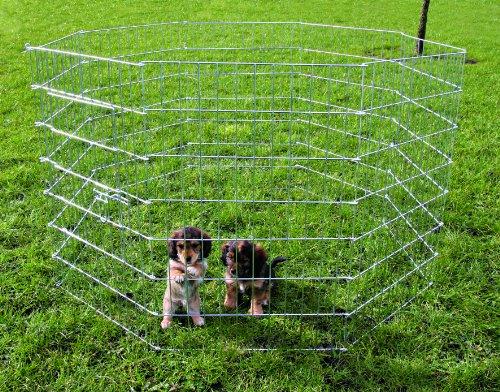 Trixie Recinto da Corsa per Cuccioli, per Uso Esterno, zincato, Dimensioni 61× 91cm, MOD. 3954