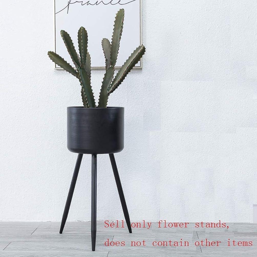 机境界透ける錬鉄製フラワースタンドフロアフラワースタンドメタルフラワースタンド屋内バルコニーフラワースタンドゴールド2つのオプションサイズ(色:黒、サイズ:28×28×65cm)、サイズ:23×23×50cm、色:黒 (Color : Black, Size : 23×23×50cm)