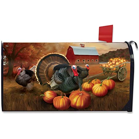 Briarwood Lane Thanksgiving Turkey Magnetic Mailbox Cover Pilgrim Hat Standard