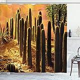 ABAKUHAUS Kaktus Duschvorhang, Sonnenuntergang in Wild Wüste, mit 12 Ringe Set Wasserdicht Stielvoll Modern Farbfest & Schimmel Resistent, 175 x 200 cm, Multicolor