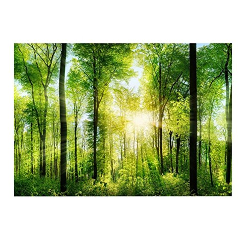 natur forest-style 436241 Hochbeet Nikita 93 x 93 x 36 cm
