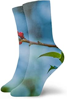 Calcetines Mane Kote Flower Lion Printing Art Personality Fashion Casual Polyester Socks Warbler Branch2