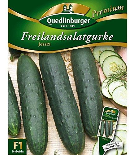 Salatgurken 'Jazzer' F1, 1 Tüte Samen