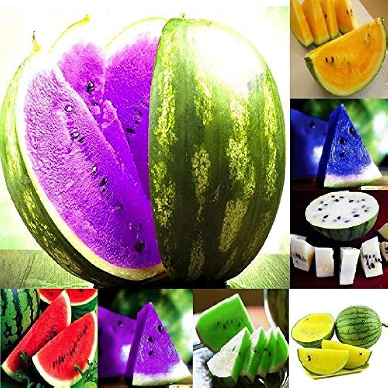 愛情深い前奏曲報酬の6ホワイト:新スウィートフルーツ種子スイカの種子オレンジイエローパープルグリーン10Xの7種類