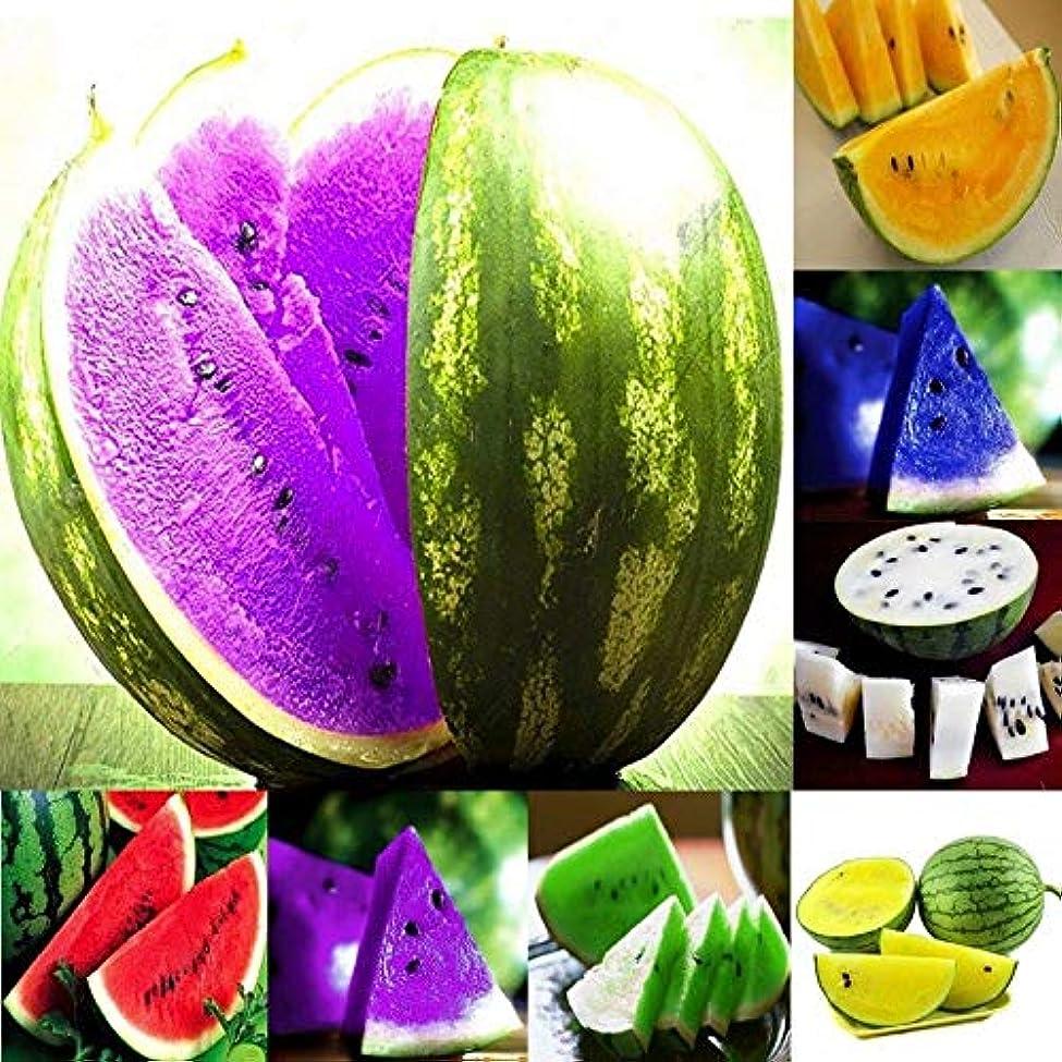 パッケージ問い合わせシンプルな4緑:新スウィートフルーツ種子スイカの種子オレンジイエローパープルグリーン10Xの7種類