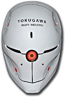 grey fox helmet