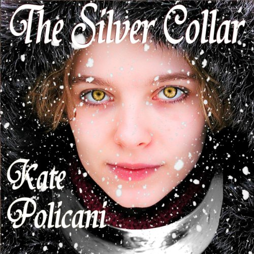 The Silver Collar audiobook cover art