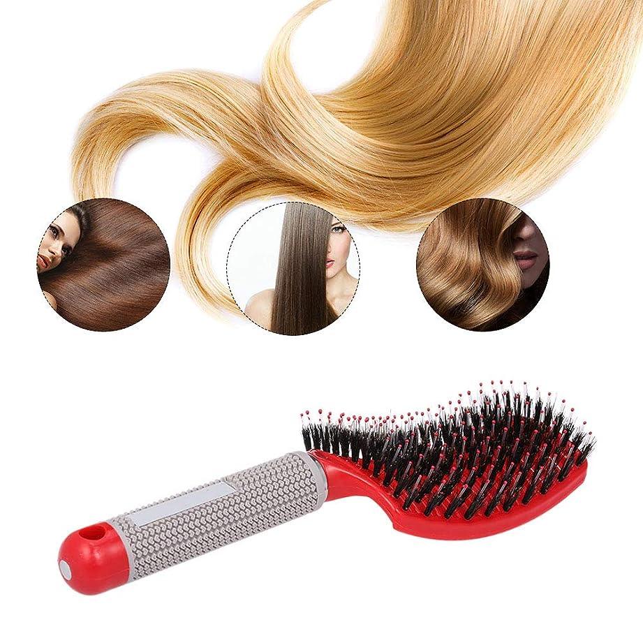 キャラバンシェア混乱させる湾曲した通気孔のブラシ女性のウェットブラシ理髪師のブロードライブラシ、ナイロンのもつれ取りピン、帯電防止のための帯電防止スムージング