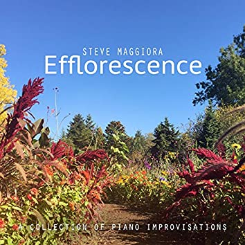Efflorescence: A Collection of Piano Improvisations