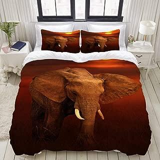 "Mokale Bedding Duvet Cover 3 Piece Set - Elephant in The Masai Mara National Park - Decorative Hotel Dorm Comforter Cover with 2 Pollow Shams - Full 80""X90"""