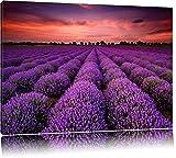 Wunderschöne Lavendel Provence Format: 120x80 auf Leinwand, XXL riesige Bilder fertig gerahmt mit Keilrahmen, Kunstdruck auf Wandbild mit Rahmen, günstiger als Gemälde oder Ölbild, kein Poster oder Plakat