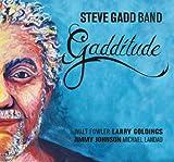 スティーヴ・ガッド / ガッドの流儀