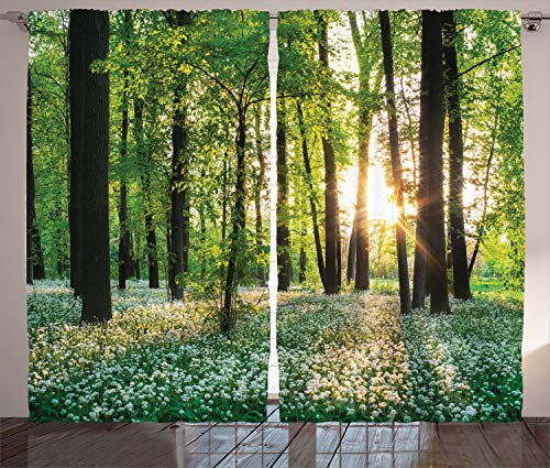 Ambesonne Forest Curtains, Sunny Forest with Wild Garlic Enchanting Wildflowers Blossoms Landscape Scenery, Living Room Bedroom Window Drapes 2 Panel Set, 108