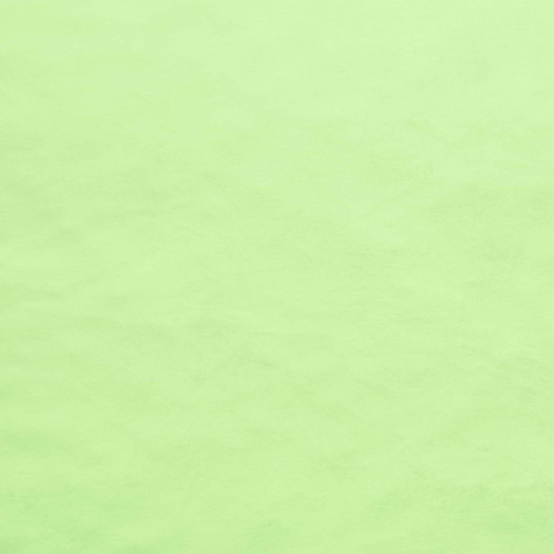 EZ Fabric Silky Free Shipping Cheap Bargain Dedication Gift Lime Minky