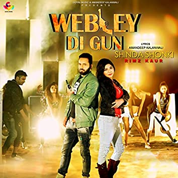 Webley Di Gun
