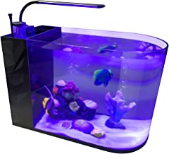 GankPike 12-Gallon Saltwater Aquarium Marine Fish Tank Reef Tank with Pump, Protein Skimmer, Heater and Thermometer
