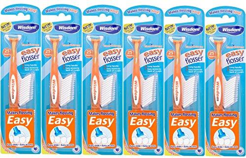 Wisdom Zahnbürste einfach Tägliche Munddusche INC Refills, 25-teilig, 6Stück