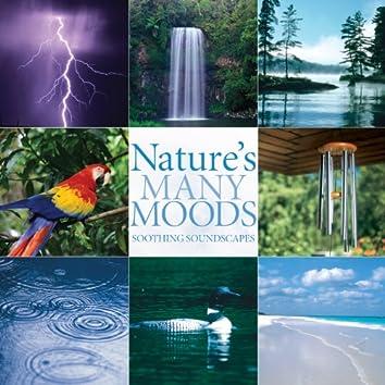 Nature's Many Moods