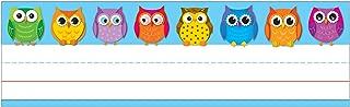Carson Dellosa Colorful Owls Nameplates (122029)