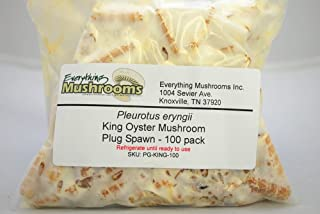 100 Wooden Plugs to Grow King Oyster Mushrooms