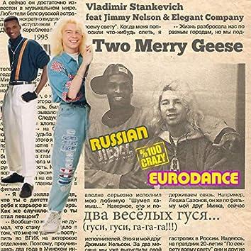 Two Merry Geese (Russian Crazy Eurodance 1995)