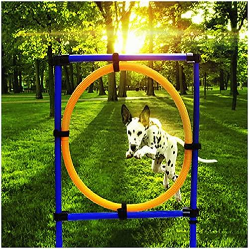 Agility Set Hunde Groß,Hunde Tunnel Agility Hindernisse Für Koordinationstraining, Agility Training Große Kleine Hunde Hundetraining Mit Tragetasche
