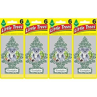 Little Trees Eucalyptus Air Freshener, (Pack of 24)