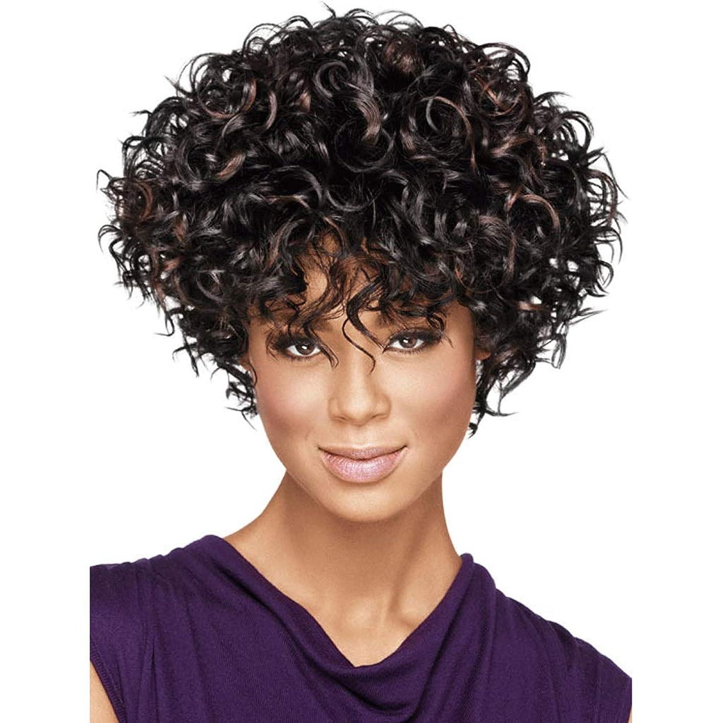 人生を作るテンション植物の11インチの合成アフロ巻き毛のかつら黒人女性のための短い巻き毛のかつら (色 : ブラック)