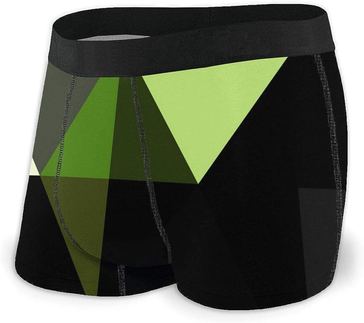 Randolph Wordsworth Mens Boxer Briefs Nordic Decoration Light Green Low Poly Breathable Underwear