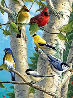 YEESAM ART DIY Paint by Numbers for Adults Beginner Kids, Birds Parrot Tree 16x20 inch Linen Canvas Acrylic Stress Less Number Painting Gifts (Parrot, with Frame)