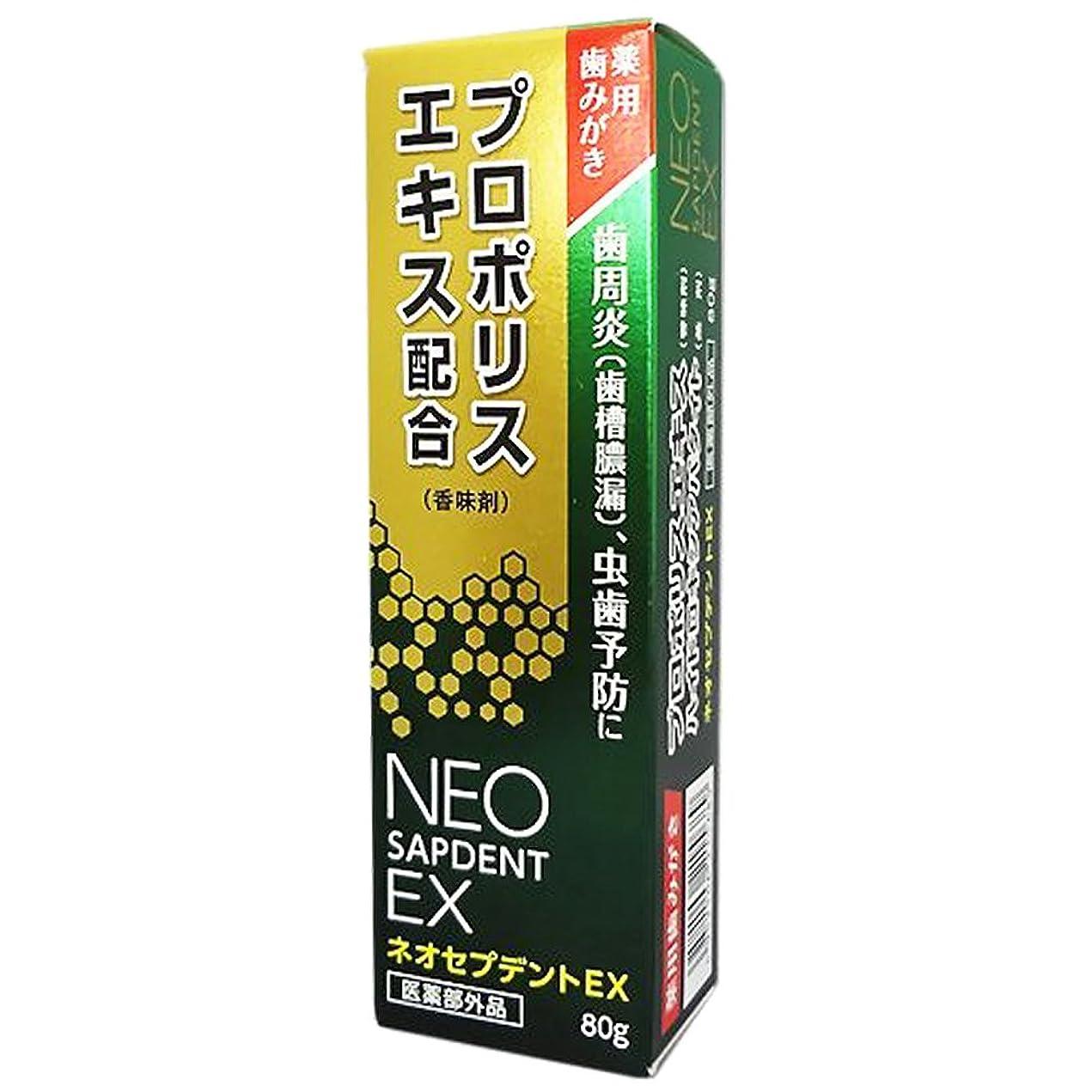 マージ肩をすくめる慣習森川健康堂 ネオセプデントEX 80g