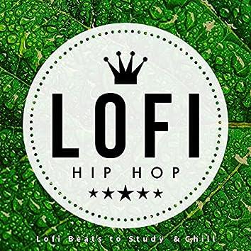 Lofi Beats To Study & Chill