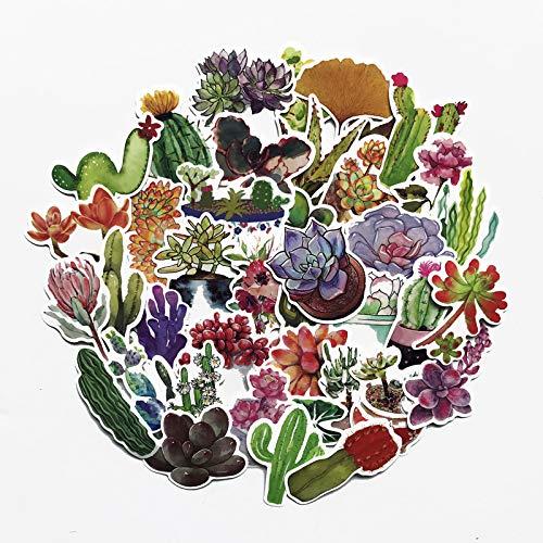 ZNMSB 70 Bonitas suculentas, Maleta, Maleta, Maleta, Pegatinas, Cactus, Maceta, Grafiti Fresco, Pegatinas