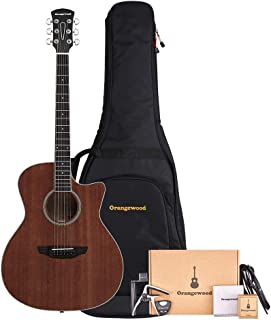 baritone 12 string acoustic guitar