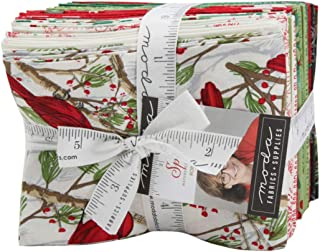 Splendid 22 Fat Quarter Bundle by Robin Pickens for Moda Fabrics