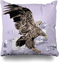 iDecorDesign Throw Pillow Covers Bird Golden Eagle Flying Sky in Fly Wildlife American Prey Detail Feather Flight Tattoo Home Decor Pillow Case Square Size 20 x 20 Inches Pillowcase