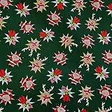 Stoff Meterware Baumwolle grün Weihnachtsmann Rentier
