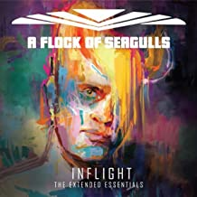 Inflight (The Extended Essentials)