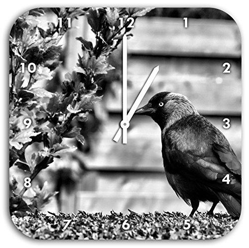 Monocrome, bel oiseau noir sur la pelouse de jardin, diamètre horloge murale 28cm avec le blanc a les mains et le visage, des objets de décoration, Designuhr, composite aluminium très agréable pour salon, bureau