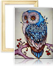 ufengke Wooden Frame Blue Owl 5D Diamond Painting Kits DIY Full Drill Diamond Embroidery Cross Stitch Sets for Beginners Craft Lovers