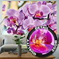 GREAT ART Wallpaper Orchid Flowers Image –Pink Flower Wall Decoration Nature Posters Beautiful Designs Nature Mural (82.7 Inch x 55 Inch)