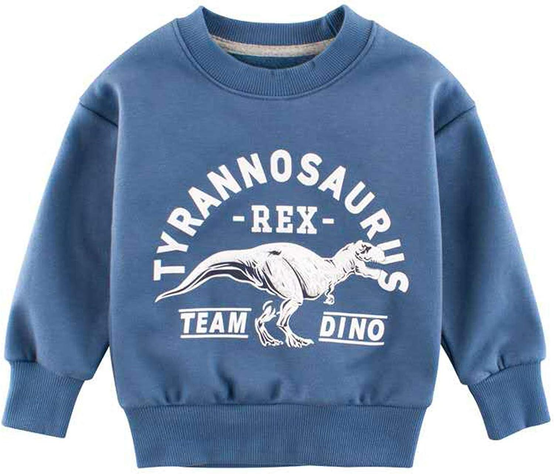 DUBASAM Toddler Boys Dinosaur Sweatshirts Cartoon Fall Winter Long Sleeve Kids Sport Outdoor Pullover Tops Tees