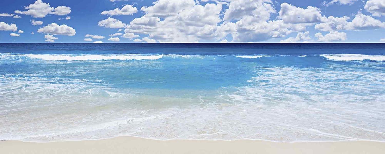 Artland Qualitätsbilder I Glasbilder Deko Deko Deko Glas Bilder 125 x 50 cm Landschaften Strand Foto Blau G3ER Großartige Strandlandschaft B00KLU9Y74 125e78