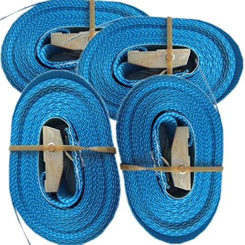 Timtina 4 Spanngurte mit Klemmschloss (4m 250 Kg 25mm breite, blau)
