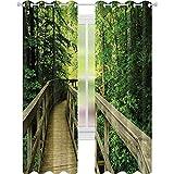 Cortinas opacas para dormitorio, vista panorámica al parque de verano, medio ambiente, ecología, naturaleza, vacaciones, escena de aventura, cortina opaca de 52 x 72 para sala de estar, verde caqui