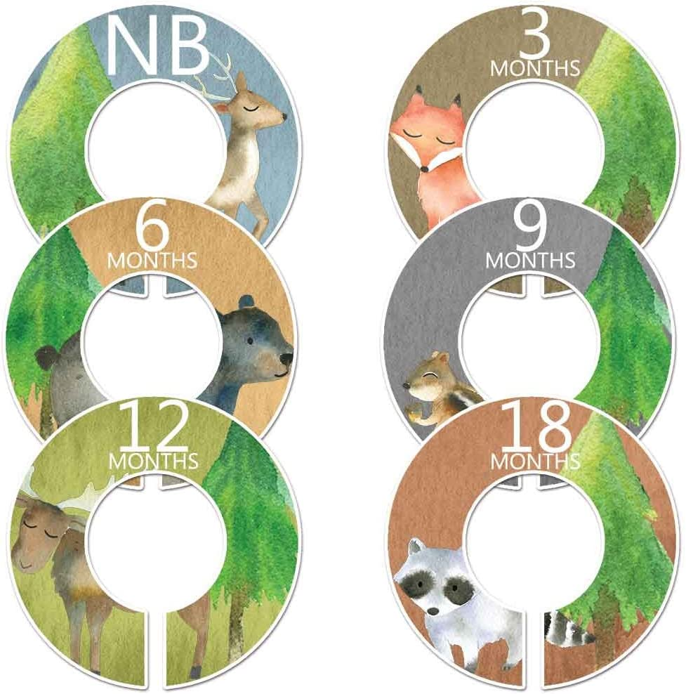 6 Baby Boy Nursery Clothes Closet Size Dividers Woodland Watercolor Gender Neutral
