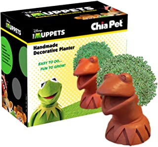 Chia Pet Kermit The Frog, Decorative Pottery Planter, Easy to Do and Fun to Grow, Novelty Gift, Perfect for Any Occasion