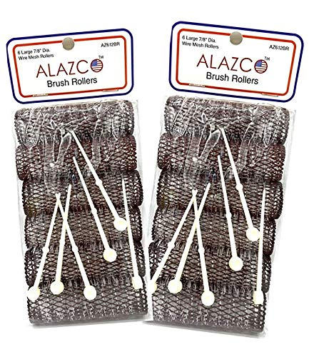12 pc Vintage Style Hair Rollers Large BRUSH ROLLERS & 12 PINS - Mesh Hair...