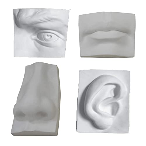 Face Cast: Amazon com
