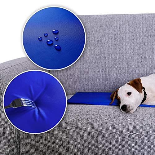 Dibea Tappetino refrigerante per Animali Domestici, Tappetino rinfrescante per Cani, Tappetino rinfrescante per Animali Domestici in Diverse Misure ((XL) 120 x 80 cm)